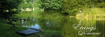 les étangs du domaine